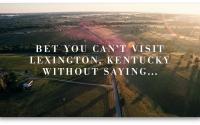 """Oh Look. Horses."" | Lexington, KY"