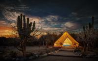 Camping & Glamping
