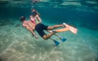 snorkeling man