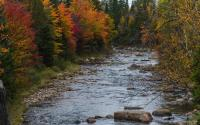 Ausable River by Olympic Jumping Complex 268