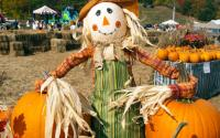 Fall festival at Gore Mountain