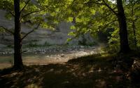 Zoar Valley 388