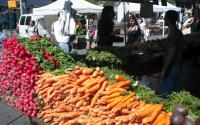 Green Market Day at Union Square Park 1860