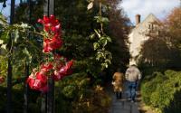 Planting Fields Arboretum & Coe Hall Mansion State Historic Park 1416