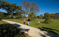 Bayard Cutting Arboretum State Park 1440