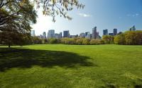 Central Park 1498