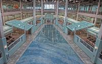 Photo of public artwork, Forces of Nature Terrazzo Floor