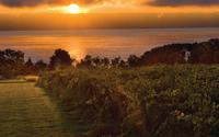 Vineyard Lake Sunset