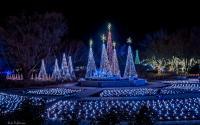 Christmas tree village of lights at Illuminations Botanica Wichita in Wichita KS