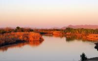 East Wetlands at the Colorado River in Yuma, Arizona