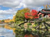 Best Places to See Fall Foliage in Rochester