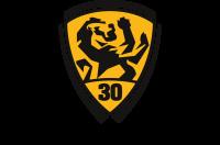 Painters Union 607 logo