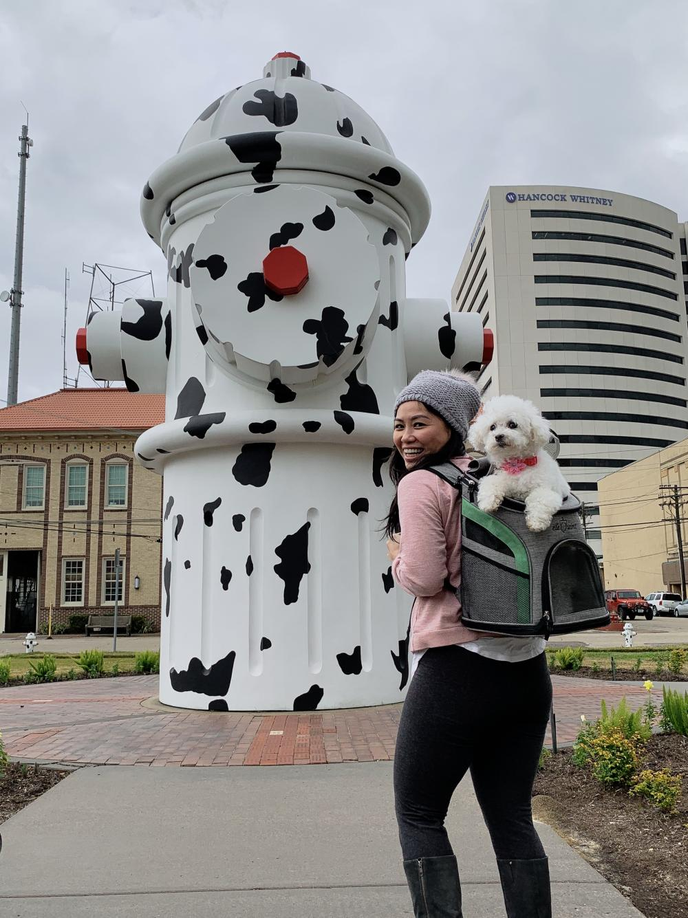 A woman and her dog check out the 24-ft high Giant Fire Hydrant located in front of the Fire Museum of Texas.