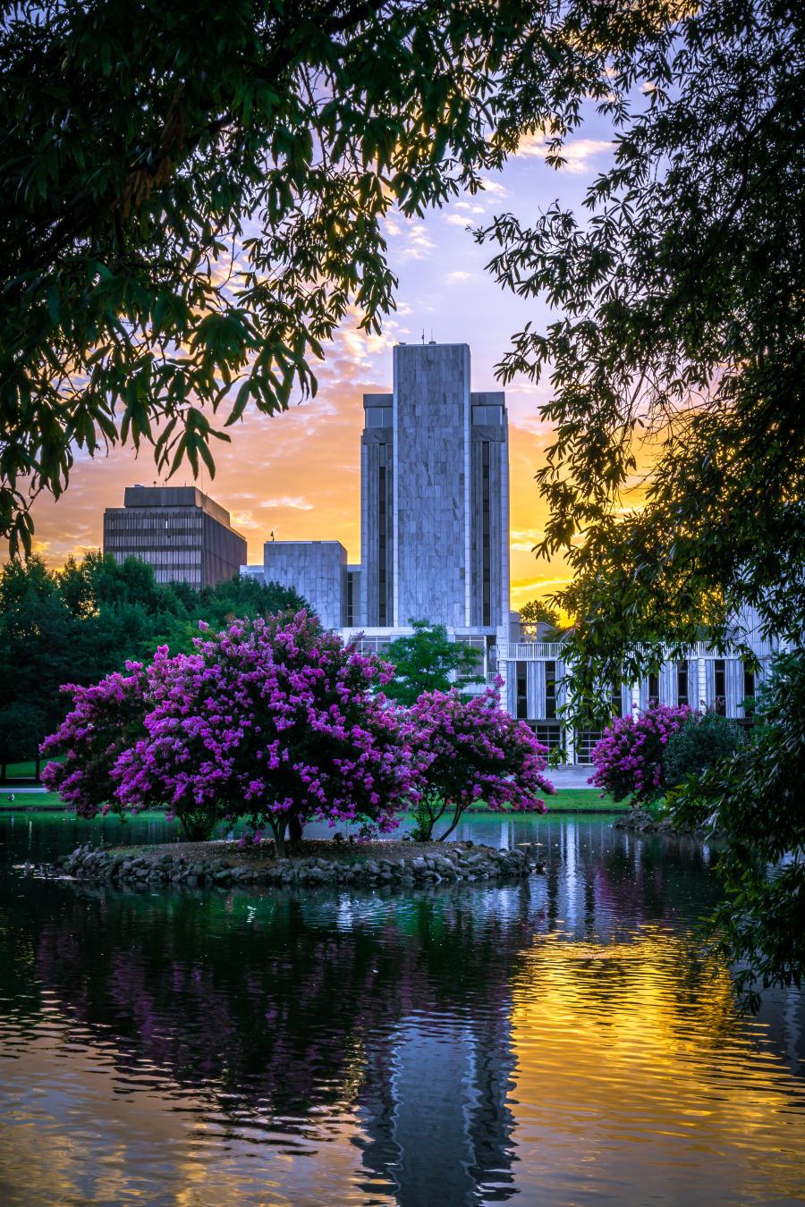 Springtime flowers paint the landscape of Big Spring Park near the Huntsville City Hall.