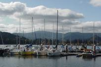 Sailboats on Dexter Lake by Debbie Williamson-Smith