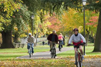 Cycling in Fall by Jamie Hooper