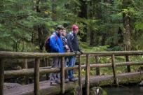 Hiking in the Cascade Mountains, McKenzie River Trail