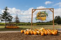 Welcome Sign for Detering Orchards