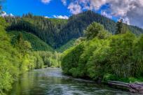 McKenzie River, Oregon Cascades by Mike Shaw