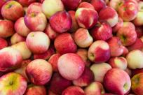 Apples from Thistledown Farms