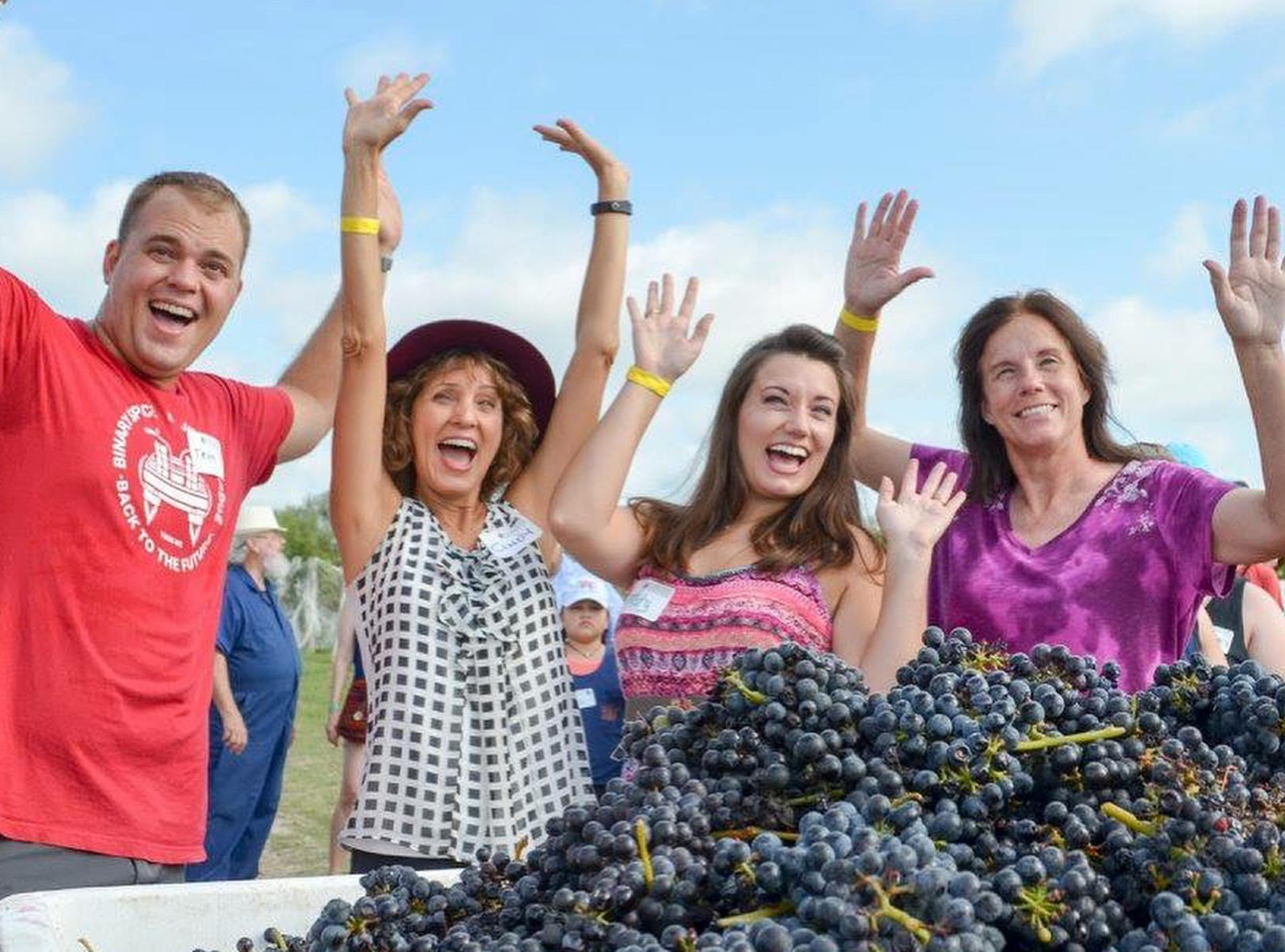 Messina Hof Harvest Festival