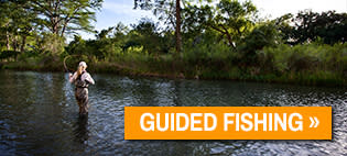 A woman fly fishes in the Guadalupe River.