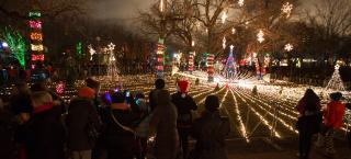 Zoo Lights - One of Chicago's most popular holiday lights display.