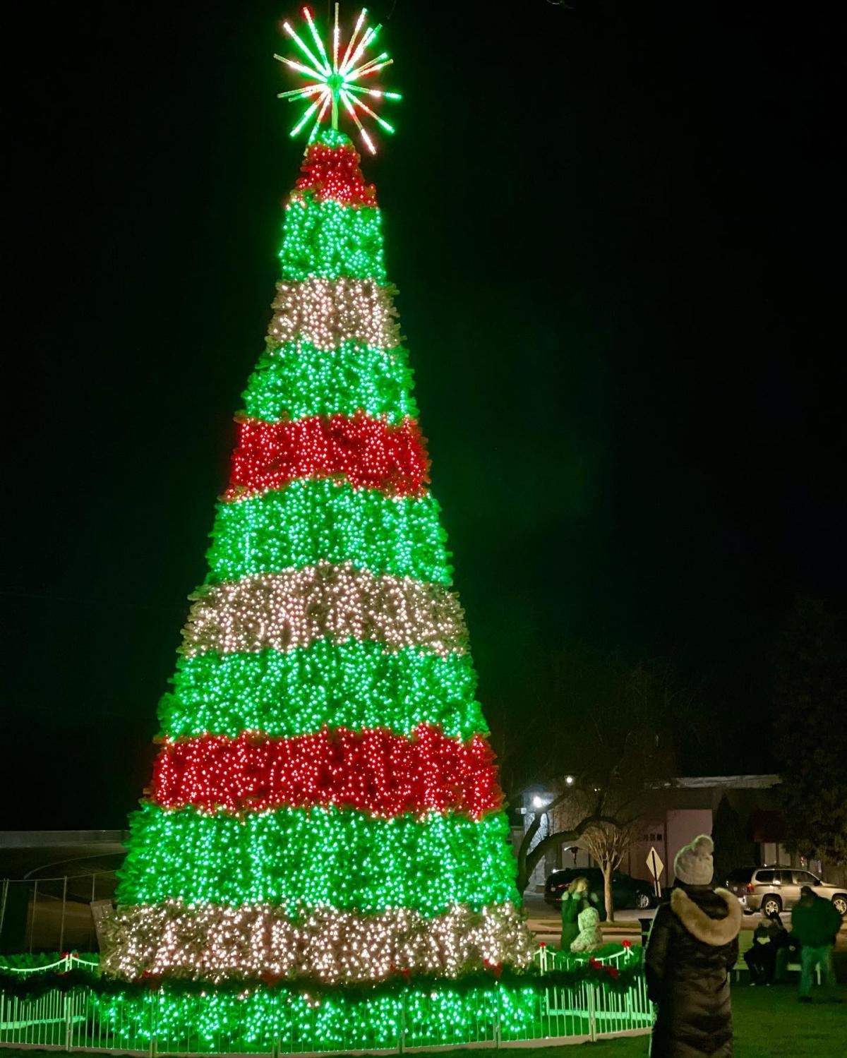 A woman watching the colorful holiday light display of Frankenmuth's Spectacular Musical Tree Show in Zehnder Park