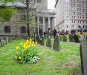 #BostonBlooms: Downtown/ Financial District