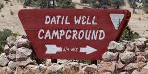 Datil