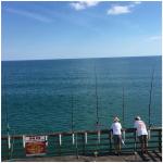 Catch a fish.