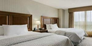 image-10792_4612_embassy suites bed.jpg-503.jpg