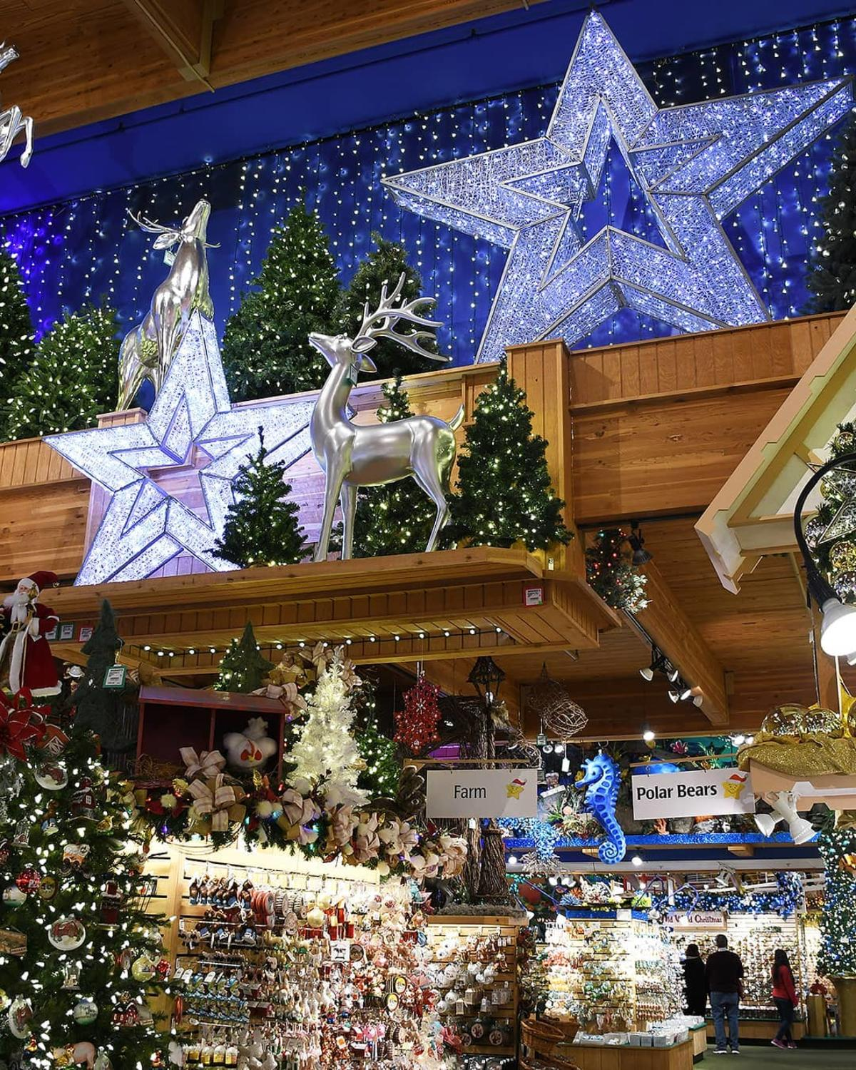Lighted stars and ornaments hanging at Bronner's CHRISTmas Wonderland in Frankenmuth