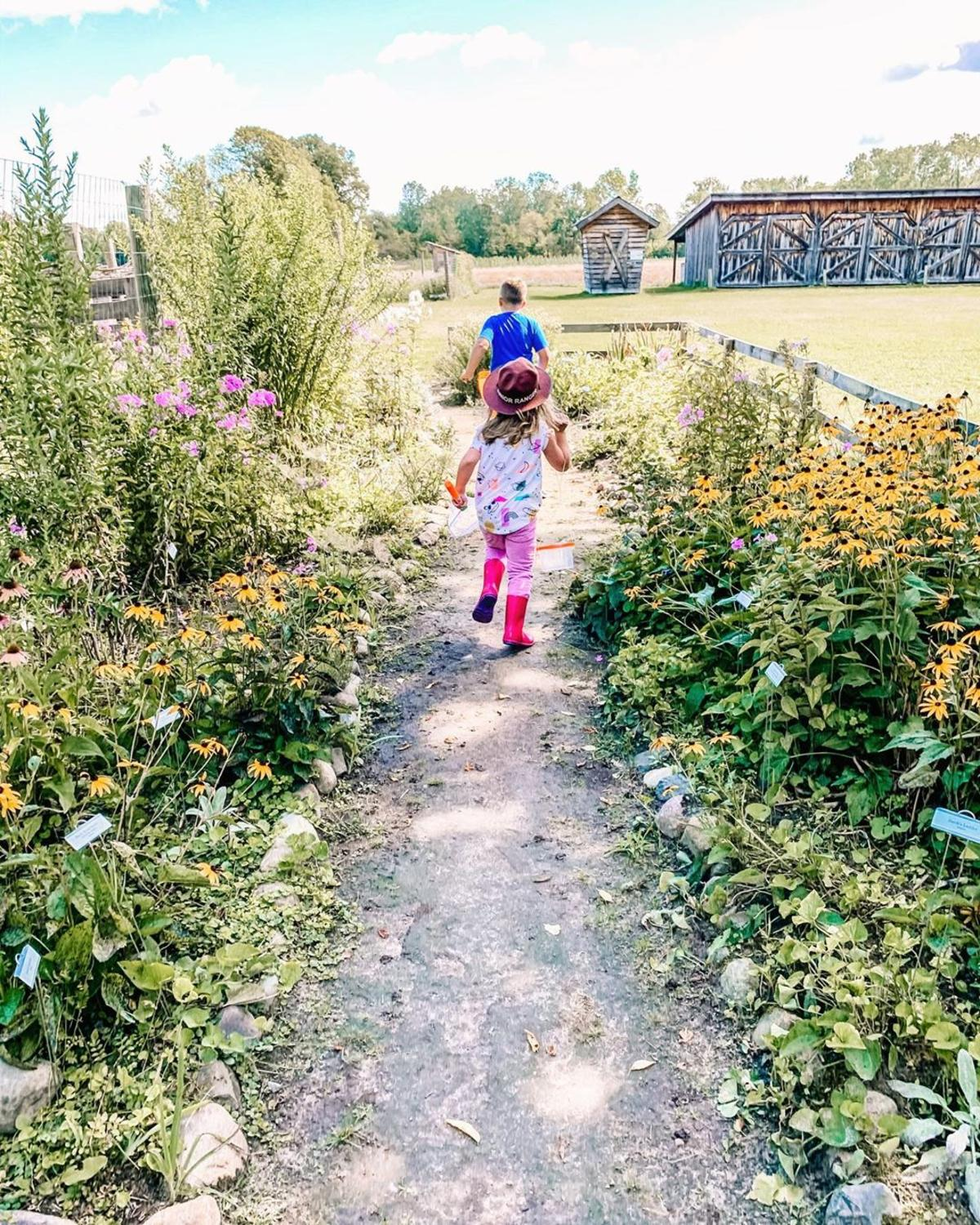 Children running down a pathway lined with flowers at Chippewa Nature Center in Midland