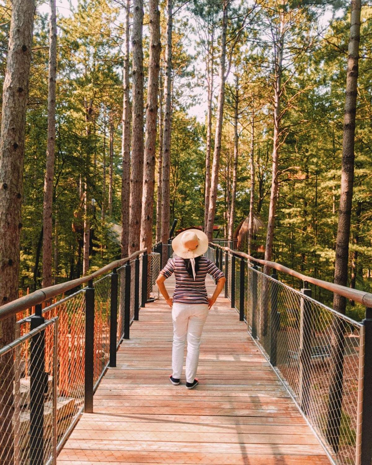 Woman walking along the tree-lined canopy walk at Whiting Forest of Dow Gardens
