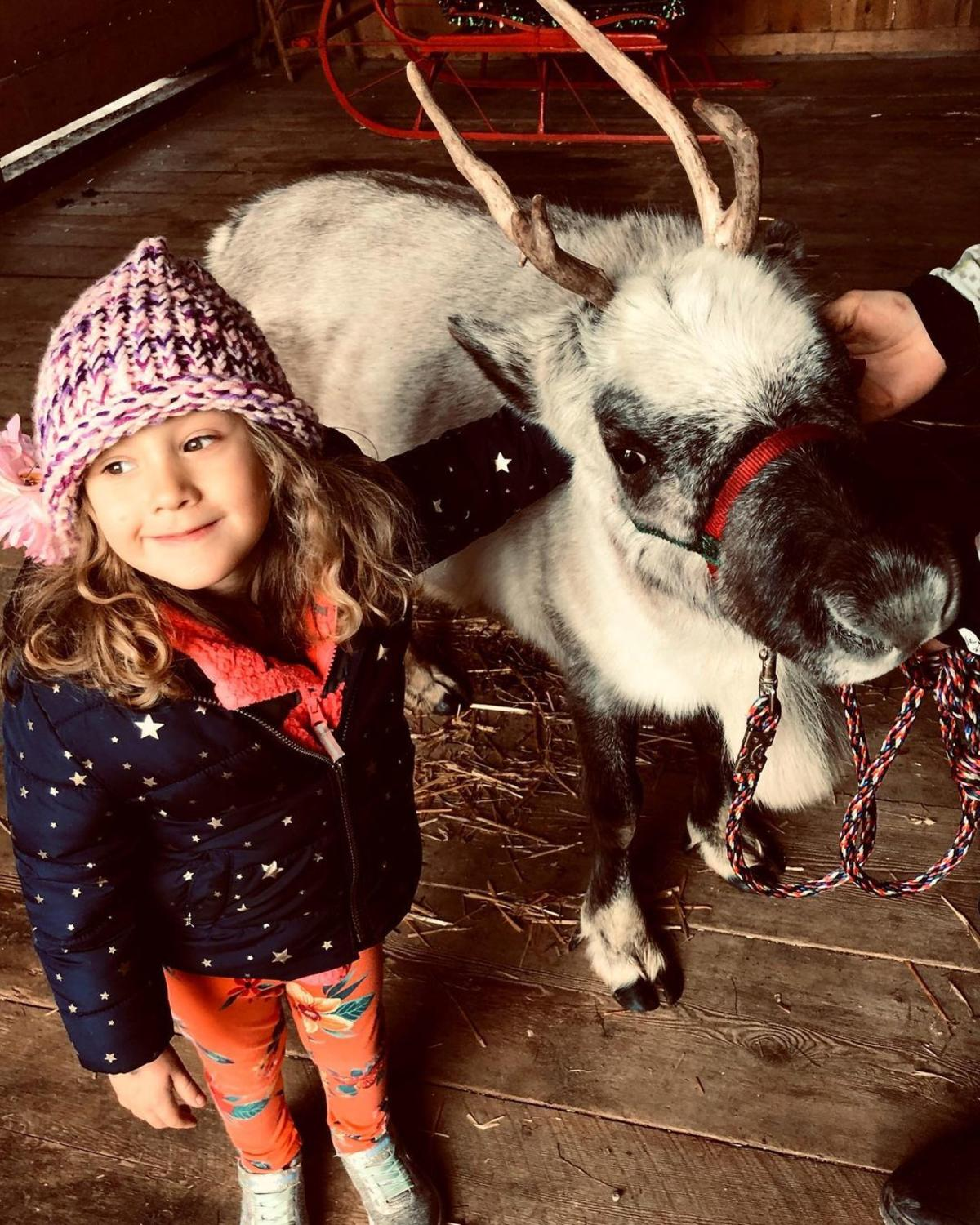 Little girl posing for a picture with a reindeer at Grandpa Tiny's Farm in Frankenmuth
