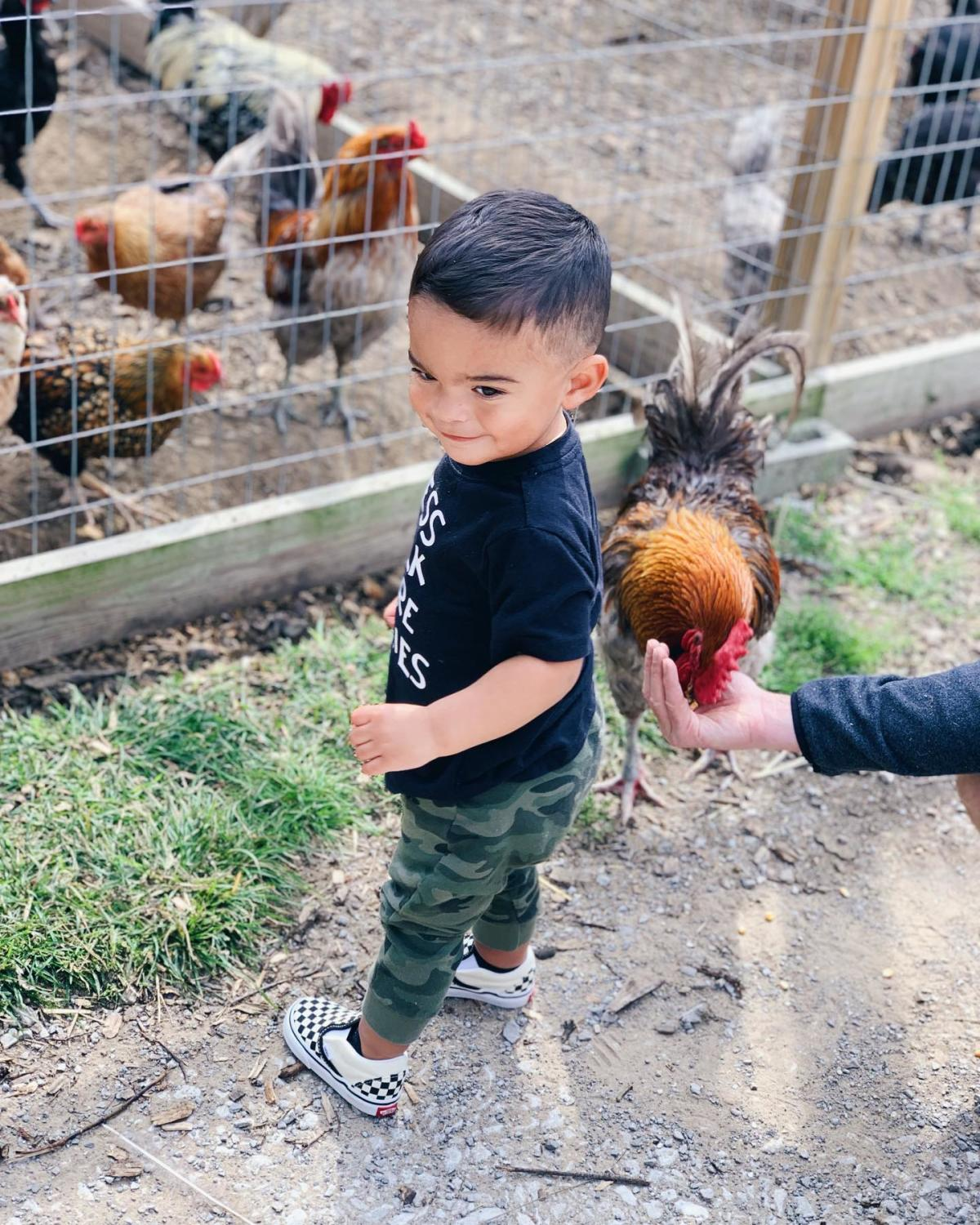 Little boy smiling while helping feed the chickens at Grandpa Tiny's Farm in Frankenmuth