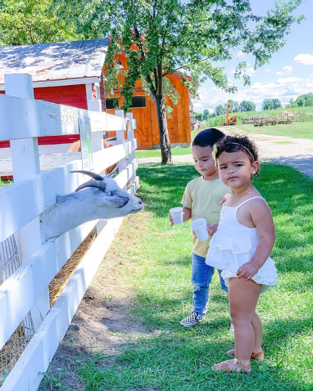 Two young kids feeding a goat at Grandpa Tiny's Farm in Frankenmuth
