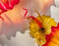 Photo of art glass wall sconce installation by Dale Chihuly