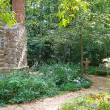 North Carolina Botanical Garden, Paul Green Cabin