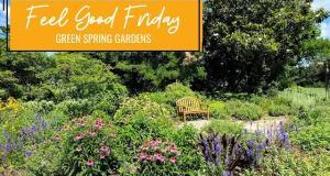 Feel Good Fridays: Green Spring Gardens