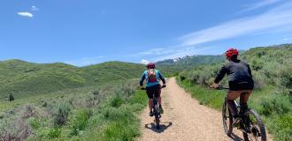 Two mountain bikers riding a dirt path