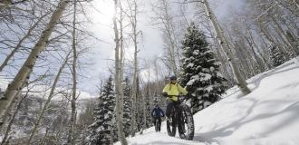 Snow biking in aspen trees