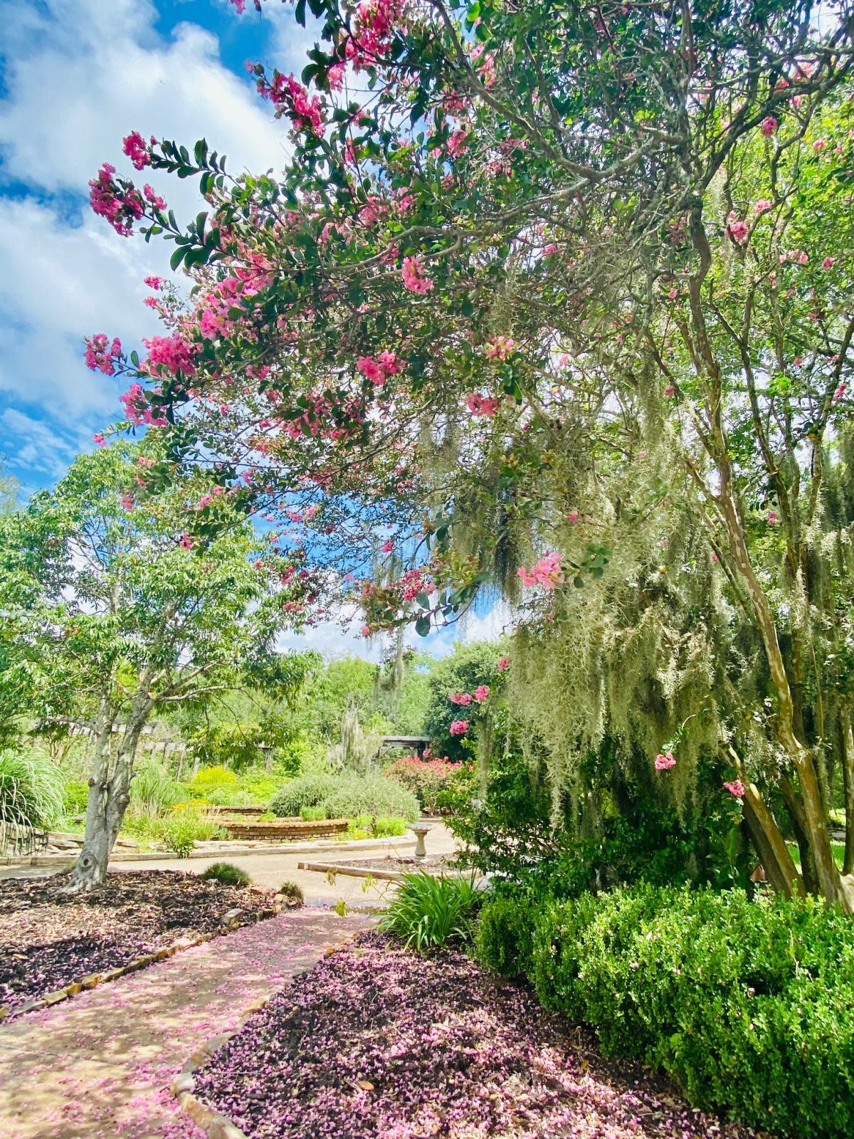 Beaumont Botanical Garden