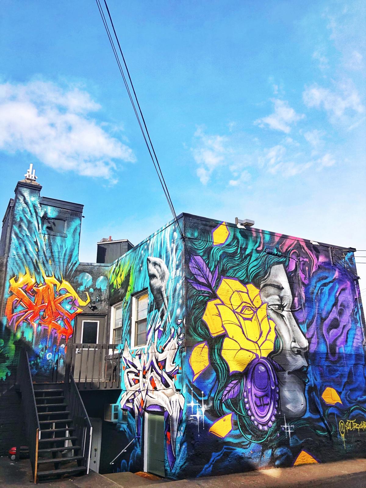 Salt Rock Mural behind Skin Prints in downtown Eau Claire