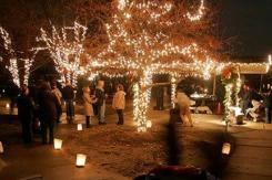 oakwood lights