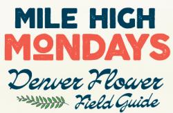MHM_Field Guide