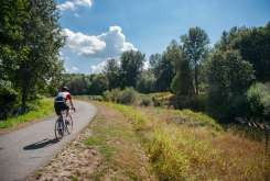 Cyclist on the Interurban Trail on a sunny day
