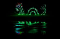 J. Iverson Riddle Development Center- Christmas Lights