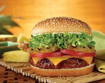 Big Juicy Cheeseburger from Red Robin in Tukwila